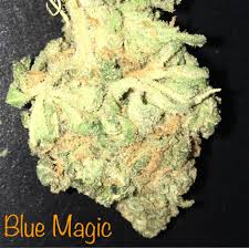buy blue magic marijuana online
