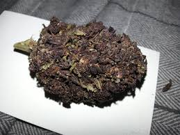 buy black label marijuana online